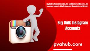 Buy Bulk Instagram Accounts